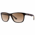 Light Havana RB4181 Sunglasses