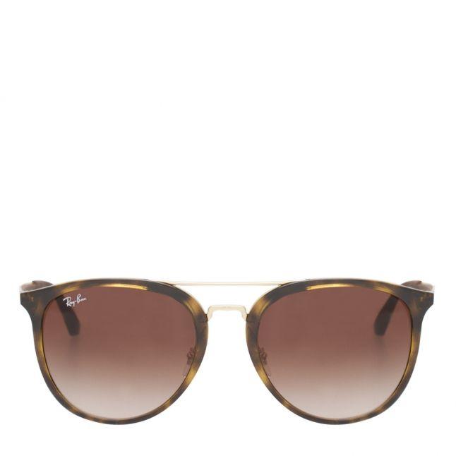 Light Havana/Brown RB4285 Sunglasses