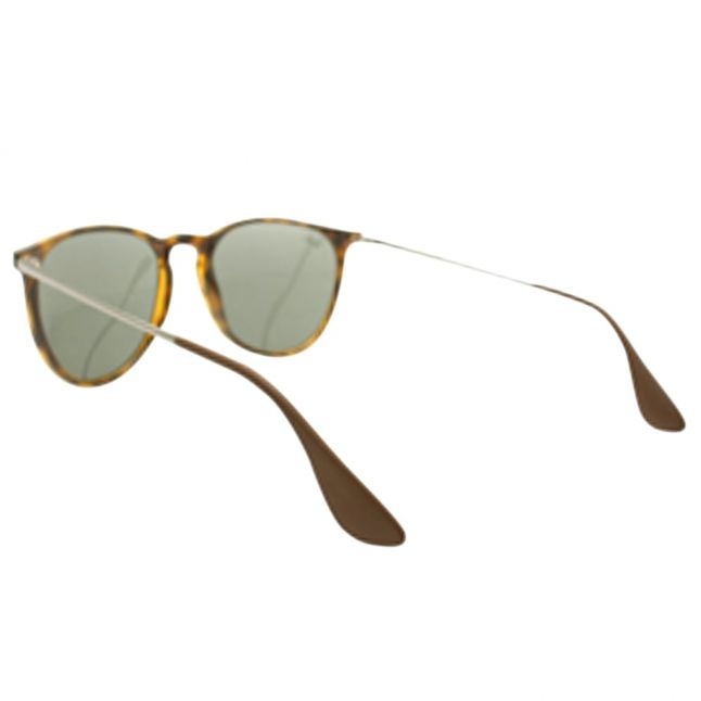 Havana/Green RB4171 Erika Sunglasses