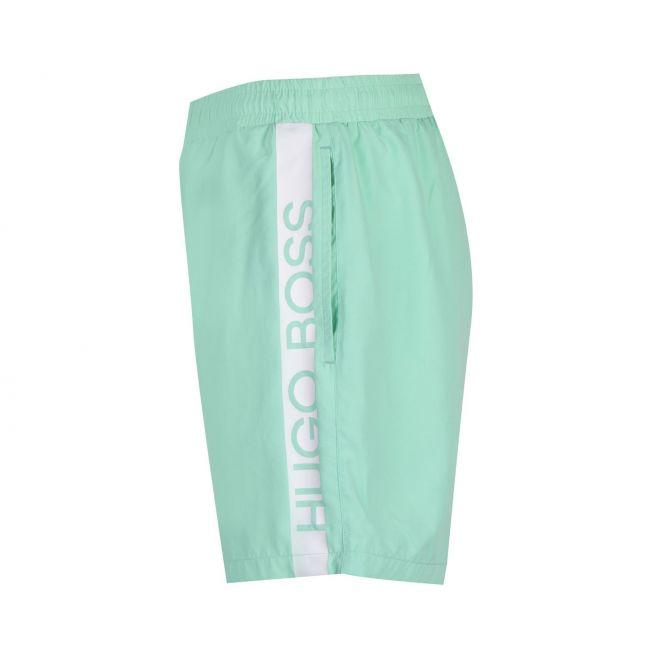 Mens Pastel Green Dolphin Side Logo Swim Shorts