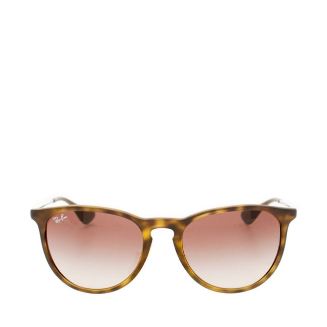 Havana RB4171 Erika Rubber Sunglasses