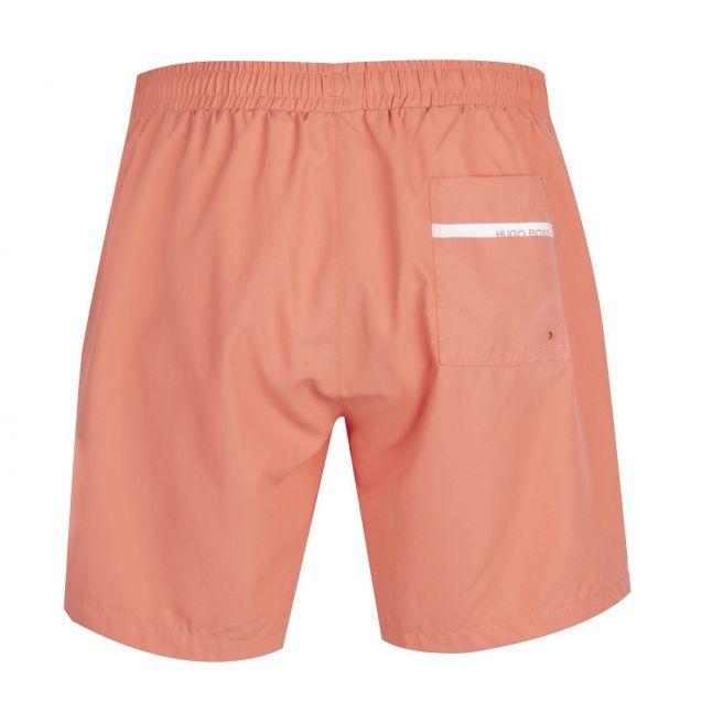 Mens Salmon Dolphin Side Logo Swim Shorts