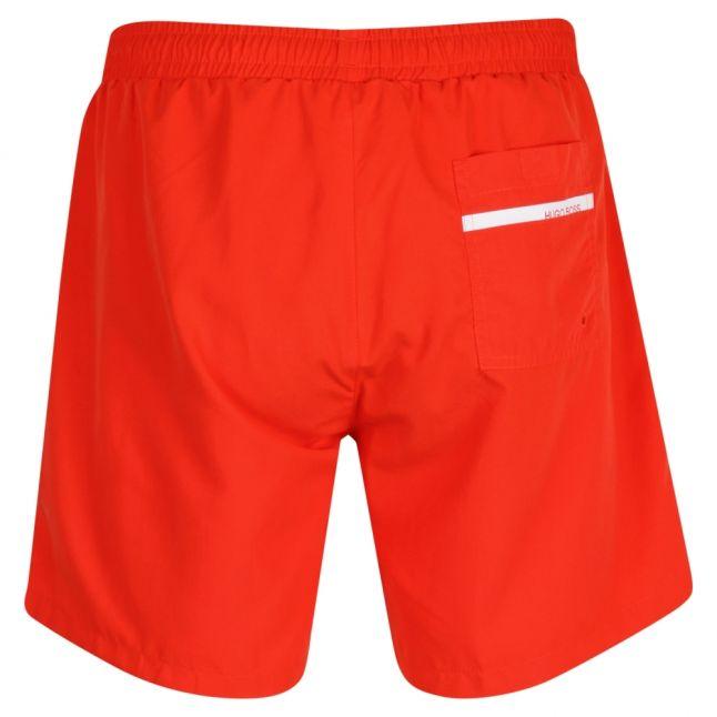Mens Orange Dolphin Side Logo Swim Shorts